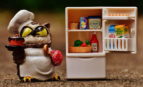 Toy owl decluttering toy refrigerator